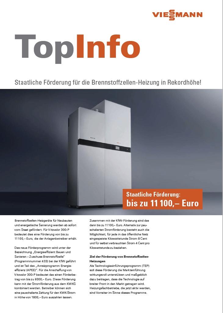 PDF Staatliche Foerderung